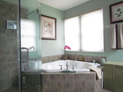 Master Bath Jacuzzi and Shower