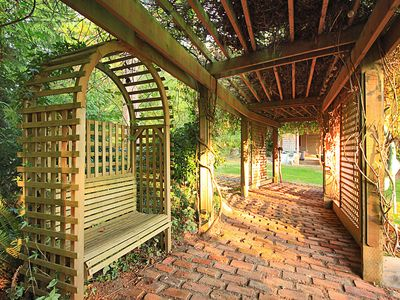 Trellis adds to the romance in the air