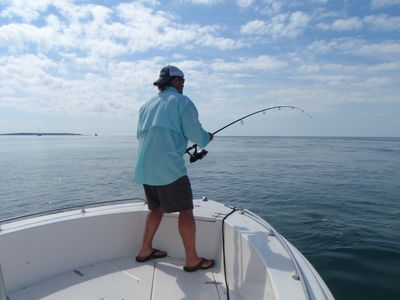 Inshore and Offshore Fishing