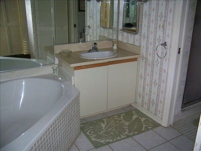 1/2 View of Large Master Bath-Other Vanity Missing from View-Shower/Toil/Separat