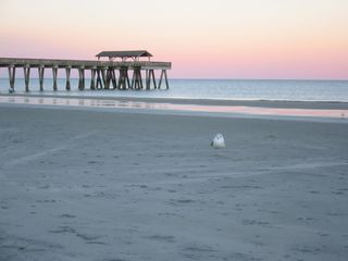 Tybee Island condo photo - Sunset at the pier