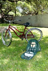 4 Bikes included and all you need for a memorable picnic at Zilker Park
