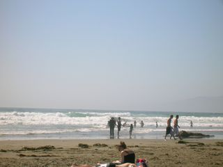 Bodega Bay cottage photo - Swim in the ocean...