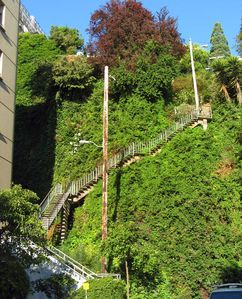 Traverse upwards @ Montgomery to the Coit Tower/downwards to these Filbert steps