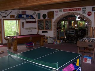 Elkhorn house photo - Fun for all ages! (Younger child play area also. See other photos.)