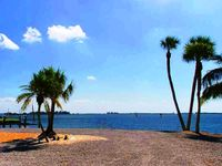 Watch Dolphin and Manatees in your backyard at Galleon Point
