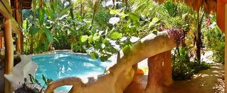 Puerto Viejo bungalow photo - Salt water pool with swin up bar, jets and waterfall