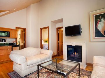 Studio Living Room w/kitchen, Gas Fire Place and Flat Screen TV