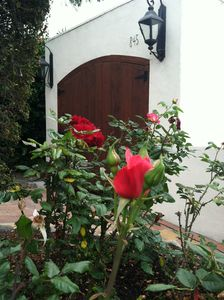 The sotillo driveway and garage from our rose garden.