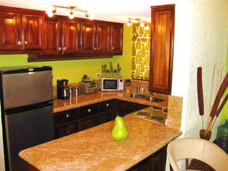 San Jose del Cabo condo photo - Fully stocked kitchen with range, micro, coffee maker, toaster, blender etc..