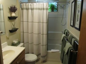 Plush towels and hand held shower in sparkling clean bathroom.