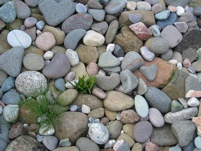 Small stones also make up the shore. See any hearts?