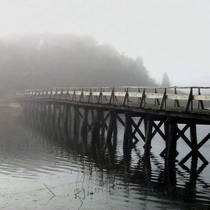 Under a Blanket of Fog—Duck Creeke/ Hamblin Island/ Uncle Tim's Bridge