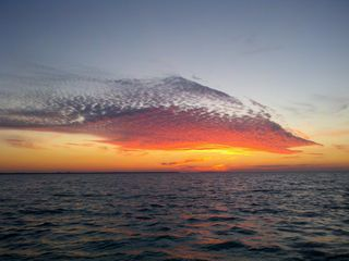 Islamorada house photo - Sailfish sunset on the bay-no photoshop here. just nature in the keys....