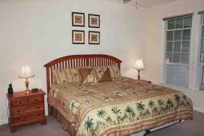 Master Bedroom with king bed, walk-in closet, TV,