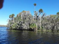 Excellent Access to Lake George and St John's River