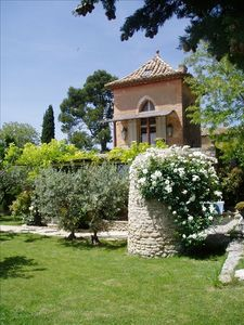 GORDES - The Garden with Olive Trees, Roses, Box Wood,