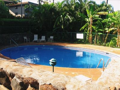 Community Pool with Tropical Surrounding