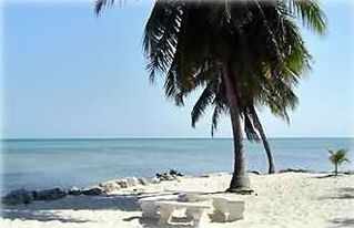 Lower Matecumbe Key house photo - Private and secluded oceanfront property with sand