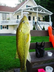 Arrowhead Lake house rental - Big Mouth Bass
