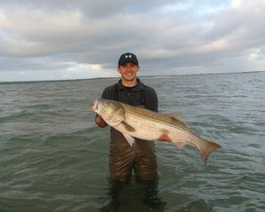 West Yarmouth cottage photo - A great morning on the flats - 46.5 inches and ~ 40 lbs!