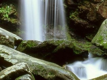 Water Fall - Beauty on a Smoky Mountain Vacation