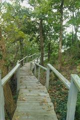 Riverhead house photo - Steps to Private Beach