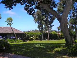 Del Mar house photo - Garden Ideal for Celebrations and Parties