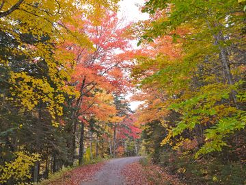 Take a back road, Cape Breton is amazing in October