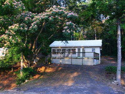 Hawkins cottage rental - This huge mimosa tree welcomes you home.