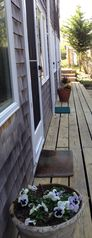 Easy 1st floor access, pathway to the beach in under one minute... - Provincetown condo vacation rental photo