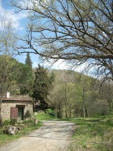 Molino del Piano farmhouse rental - View of Capanna