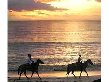 Horse Riding on the Beach, Negril