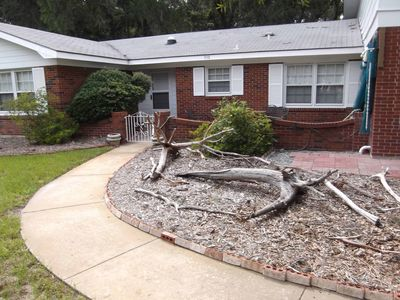 Driftwood landscape feature in front of house.