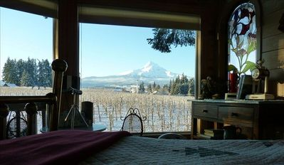View of Mt Hood from inside The Treehouse.