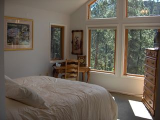 Nemo cabin photo - Master bedroom with views from catheral windows