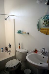 Guest bath and powder room.