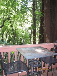 Rear deck with barbeque is a great place to dine and see deer.