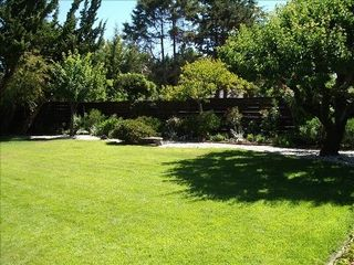 Castro Valley house photo - Large landscaped and manicured yard with fruit trees!