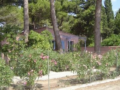 The franqui house under the pines in charming village