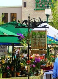 Walk to Main Street with Cafes, Shops, Farmers Market! Eat, Drink & be Merry!