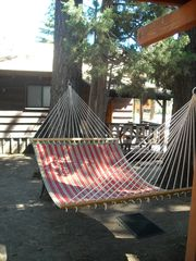 Big Bear Lake cabin photo - Hammock under the stars and whispering pine trees.