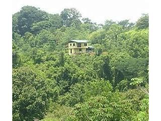Dominical house photo - House is on own private 5 acres