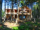 A view of the house from the bay... - Gouldsboro cabin vacation rental photo