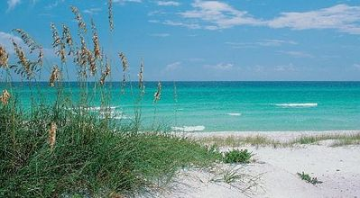 Navarre Beach: Discover the stunning beauty of tranquil white sandy beaches