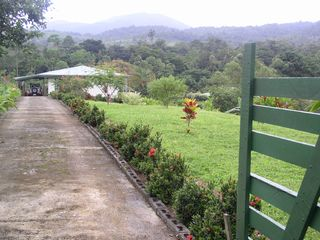 Volcano Arenal house photo - View of driveway