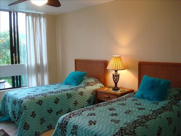 Two twin beds in large guest bedroom