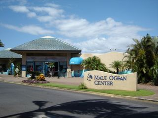 Maalaea condo photo - Popular Maui Ocean Center w/ Aquarium, Restaurants & Shopping in Maalaea Harbor