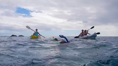 Chocolate Hole villa rental - Aussie is about outdoor fun right at your doorstep. Free kayaks and snorkel gear.