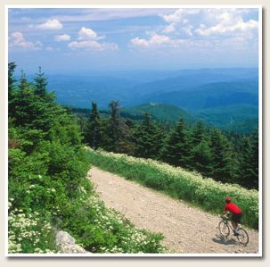 Mountain Biking on Killington